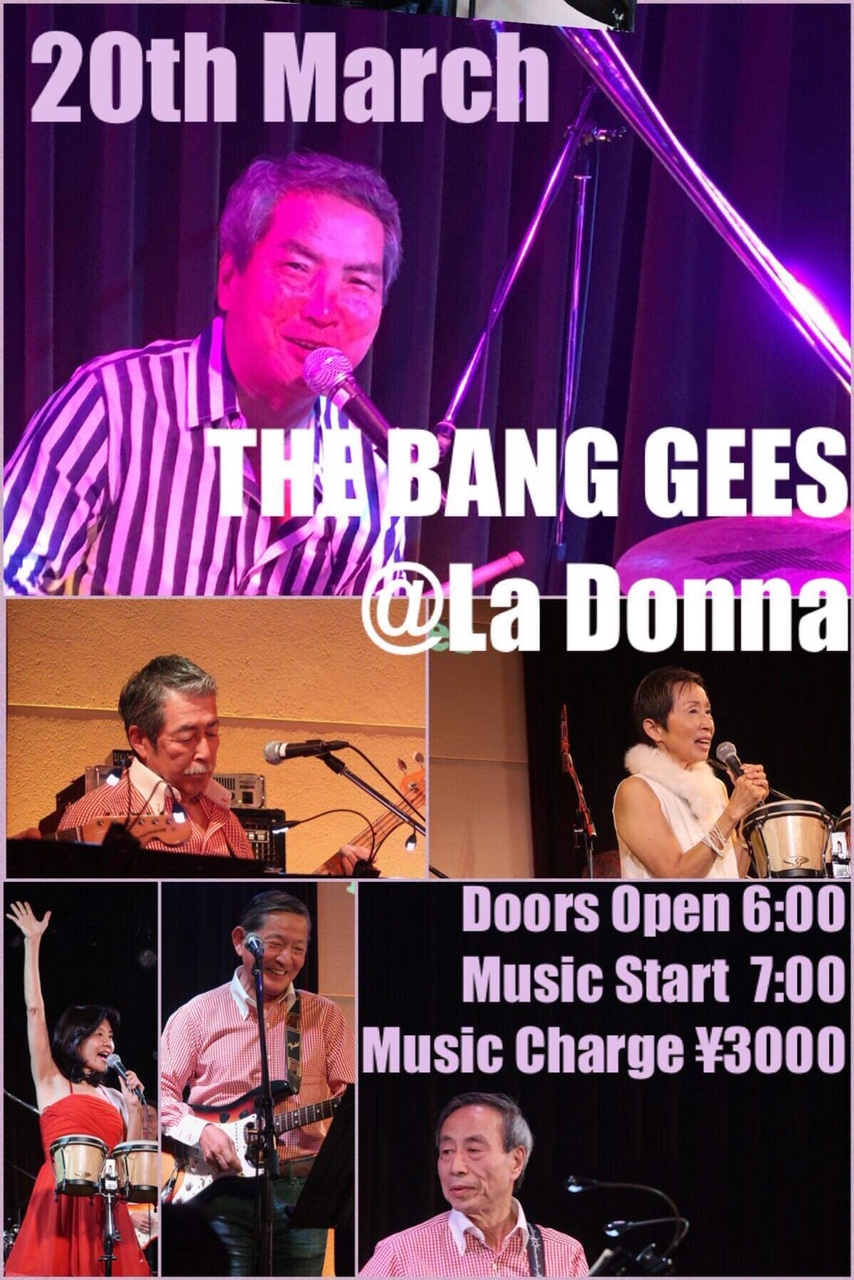 The Bang Gees Live